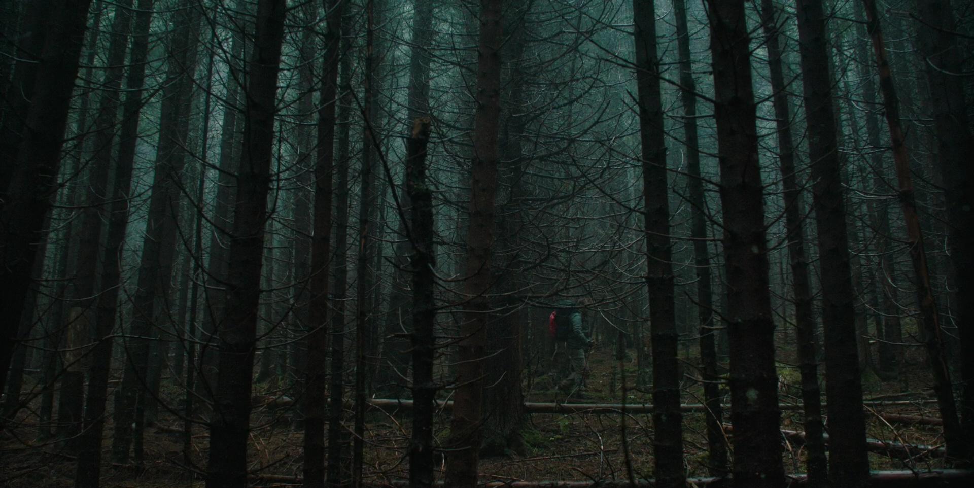 Forêt film Le Rituel avis Netflix
