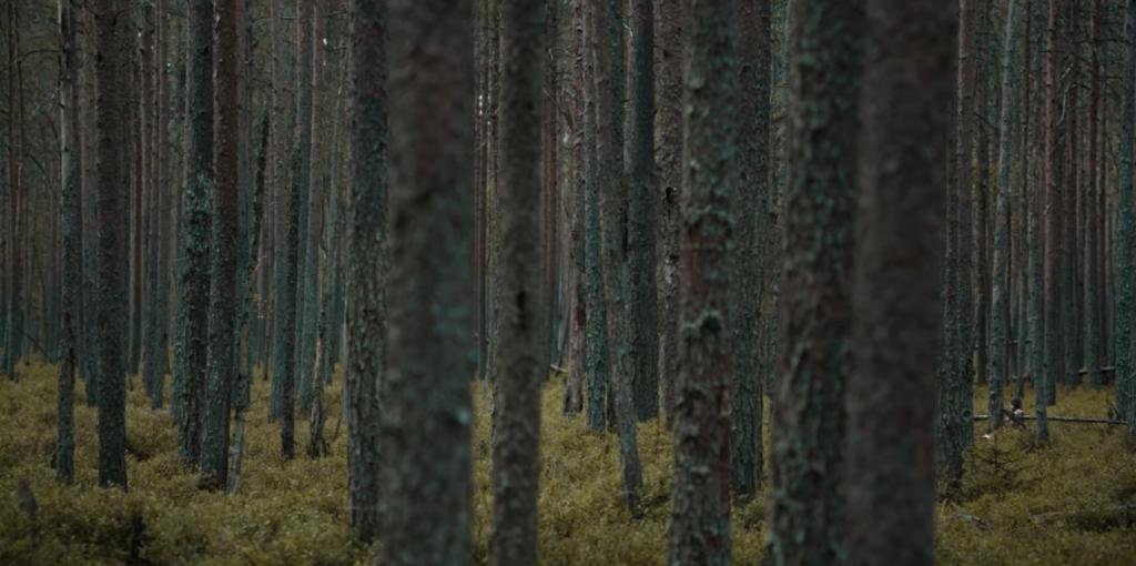 Paysage critique Le Rituel film Netflix